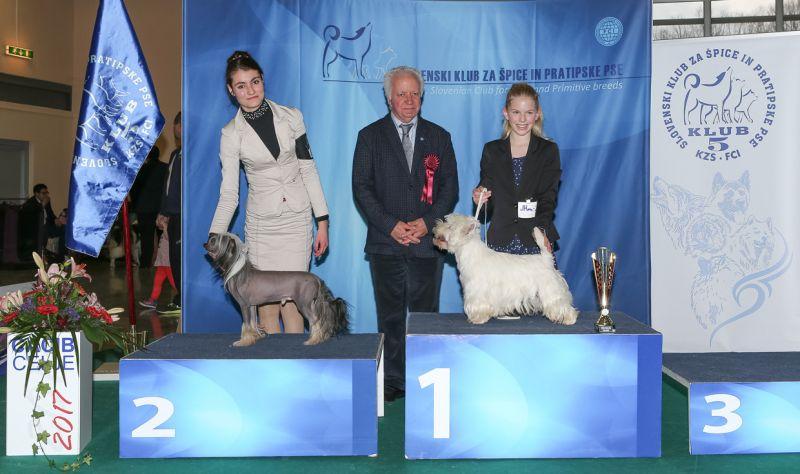 Best Junior Handler - BIS IDS Celje (Slovenia), Saturday, 18 February 2017