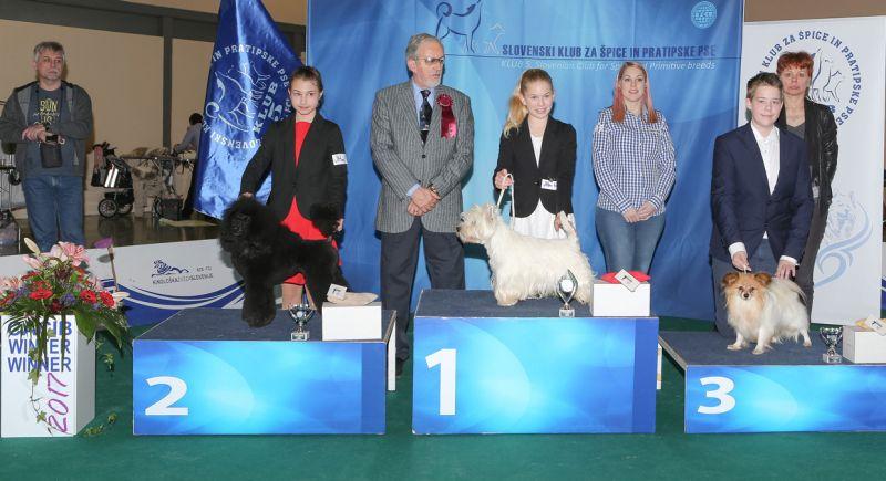 Best Junior Handler, 9-12 years - BIS IDS Celje (Slovenia), Sunday, 19 February 2017