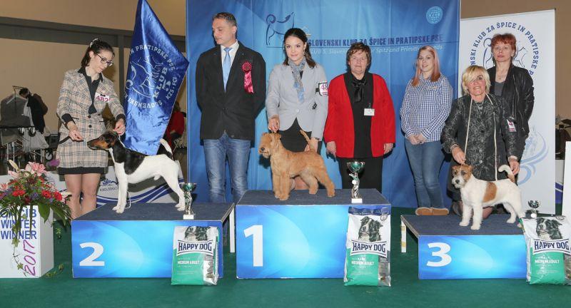 FCI group III - BIS IDS Celje (Slovenia), Sunday, 19 February 2017