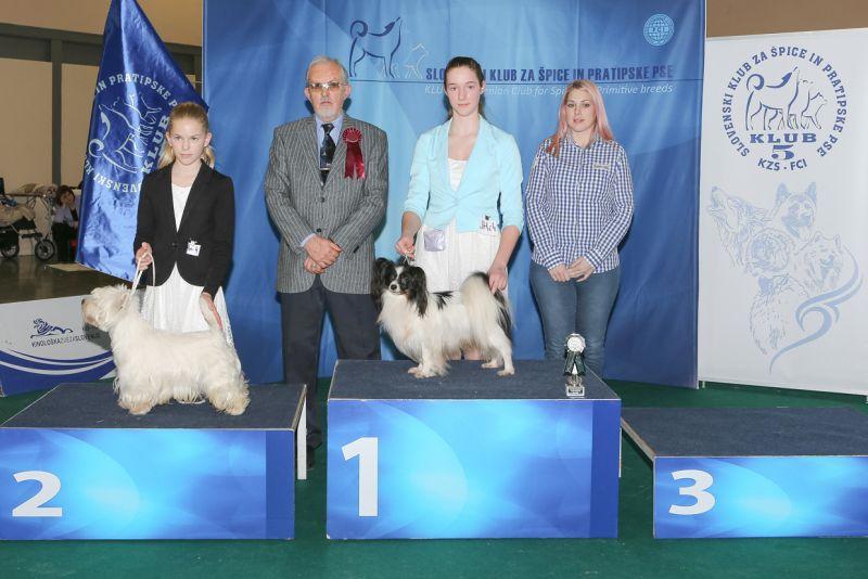 Best Junior Handler - BIS IDS Celje (Slovenia), Sunday, 19 February 2017