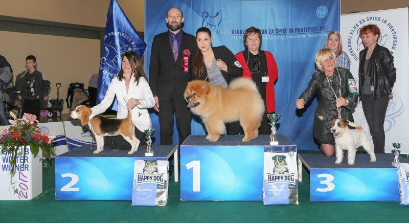 Best Minor Puppy - BIS IDS Celje (Slovenia), Sunday, 19 February 2017