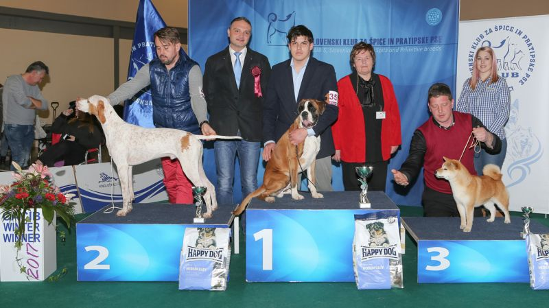 Best Puppy - BIS IDS Celje (Slovenia), Sunday, 19 February 2017